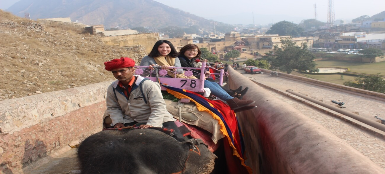 Study Abroad Home Page – Elephant Ride